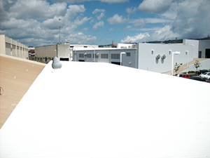 AREAS-OF-EXPERTISE Roof-Coatings2